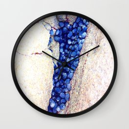 Blue Shells Wall Clock