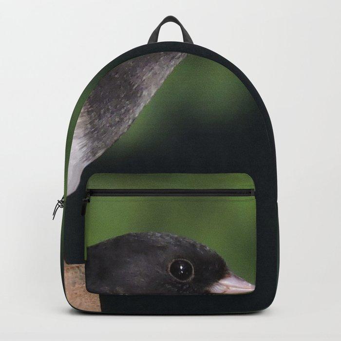Dark-Eyed Junco Backpack