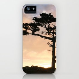 Sunset in Point Reyes iPhone Case