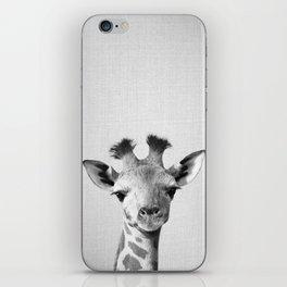 Baby Giraffe - Black & White iPhone Skin