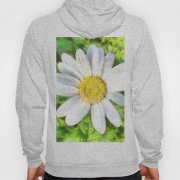 Radiant Daisy Watercolor Hoody