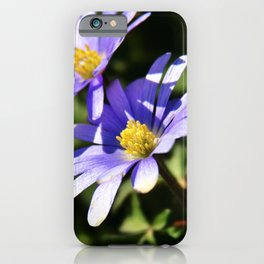Anemone Blanda Purple Flowers | Botanical | Nature Photography iPhone Case