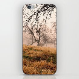 Natural Mystic in the Air iPhone Skin