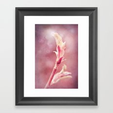 HOPE - BIRTH OF A LEAF Framed Art Print