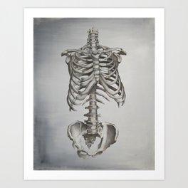 Skeleton Study Art Print