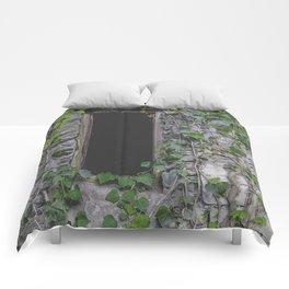 wood window Comforters