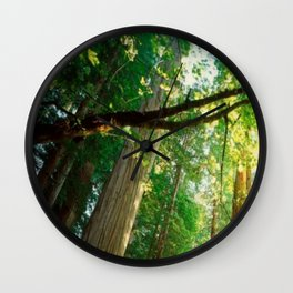 Magical Northern California, Humboldt County and Redwood Trees. Wall Clock