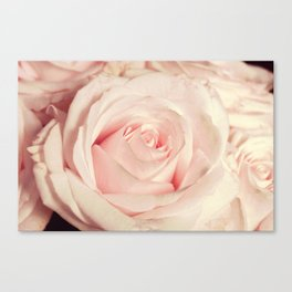 Pink rose photography Flower print Floral bedroom decor blush Gift for her Canvas Print