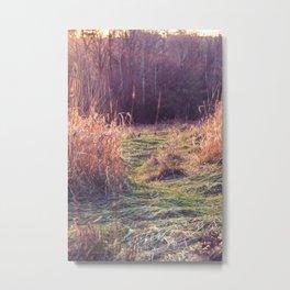 Fantasy Field Metal Print