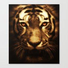 Midnight Tiger Canvas Print