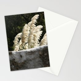 Flowering Pampas Grass Plumes Stationery Cards