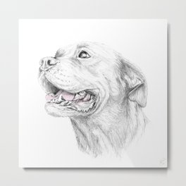 Murphy :: Loyalty Metal Print
