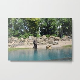 Elephant on the Water Metal Print
