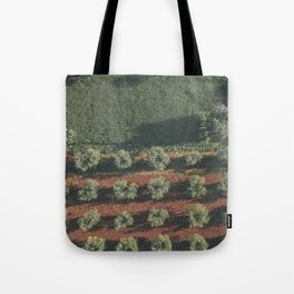 Aerial photo, nature textures, drone photography, olive trees, Apulia, Italian countryside Tote Bag