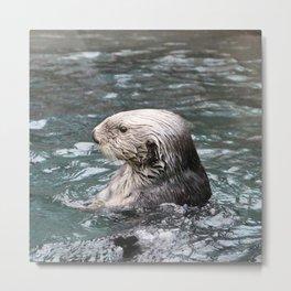 Otter Metal Print