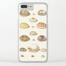 Vintage Seashell Chart I Clear iPhone Case