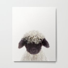 Baby Lamb, Baby Animals Art Print By Synplus Metal Print