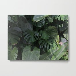 monstera Metal Print