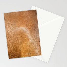 Horse Hide rustic decor Stationery Cards