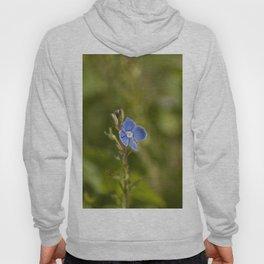 The little blue flower Hoody