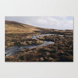 Iceland IV Canvas Print