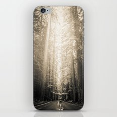 Forest Redwoods Road Trip - Black and White California Fog Forest iPhone & iPod Skin