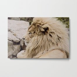 "Every ""Lion"" Matters Metal Print"