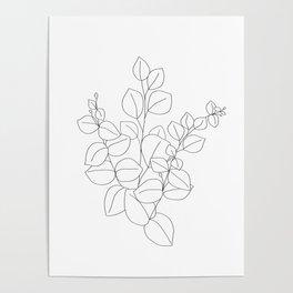 Minimalistic Eucalyptus  Line Art Poster