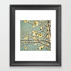 Aqua Dogwood Framed Art Print