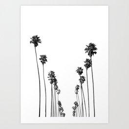 Palm Trees 8 Art Print