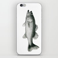 bass iPhone & iPod Skins featuring Bass by Newmanart7 -- JT and Nancy Newman, Art a