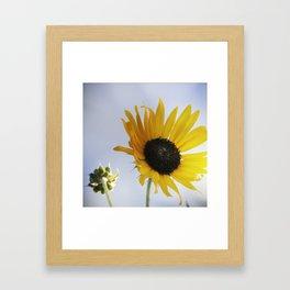expectant Framed Art Print
