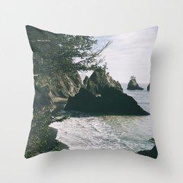 Samuel H. Boardman II Throw Pillow