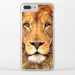 Wild Cat Glare Clear iPhone Case