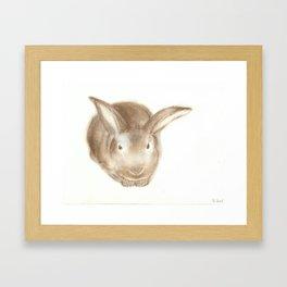 Christopher Rabbit Framed Art Print