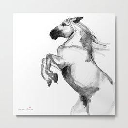Horse (Andalusian) Metal Print