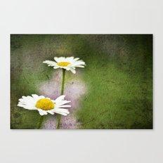 Daisy Chain 4 Canvas Print