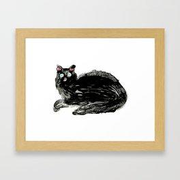 Black Cat. Framed Art Print