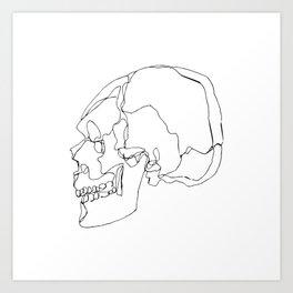 Cranial Bones Art Print