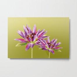 Water Lilies violet green Metal Print