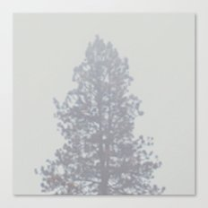 Blurry Pine Tree from a Mountain Town Canvas Print
