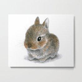 Rabbit 61 Cute bunny Metal Print