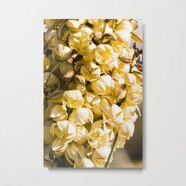 Super Bloom 7454 Paradise Joshua Tree Metal Print