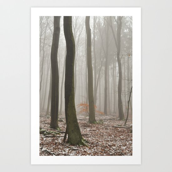 misty woods Art Print