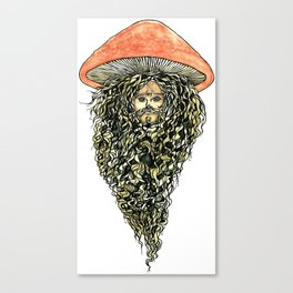swamp wizard Canvas Print