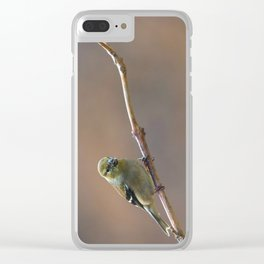 Early Spring Goldfinch Clear iPhone Case