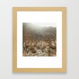 Joshua Tree National Park Framed Art Print