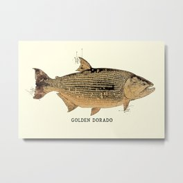 GOLDEN DORADO Vintage Art Sketch for the Fishing Lovers and Anglers  Metal Print