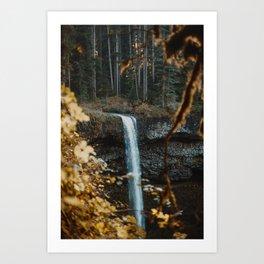 Golden Foliage Waterfall Art Print