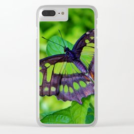 Green And Black Butterfly Clear iPhone Case